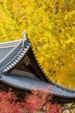 Miyajima. The famous Floating Torii gate, Japan Royalty Free Stock Images