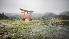 Miyajima, The  famous Floating Torii gate, low tide, Japan. Royalty Free Stock Photos