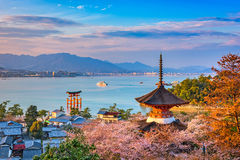 Miyajima, Hiroshima, Japon images libres de droits