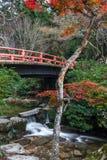 Miyajima, Hiroshima, parc de Momijidani Image libre de droits