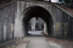 MIYAJIMA JAPAN - FEBRUARI 04, 2018: Tunnel och övergiven giftfabrik av kriget i den Miyajima kaninön arkivfoton