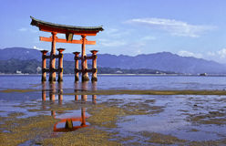Miyajima temple tori Stock Photo