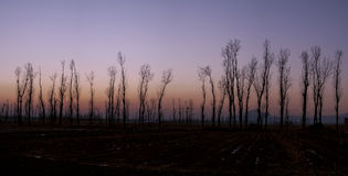 Miyun Пекина Стоковое Фото
