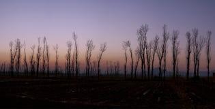Miyun de Beijing Foto de Stock