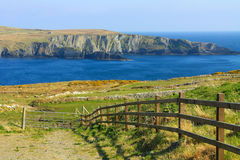 Mizen head cliffs in Ireland Royalty Free Stock Photography