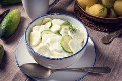 Mizeria is a Polish cucumber salad Royalty Free Stock Photos