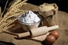 Mjöl i bunke med ägg och ris Royaltyfria Bilder