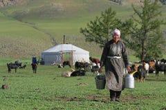 Mjölka arbeten, yurts och flocken av getter Royaltyfri Bild