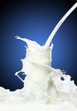 mjölka färgstänk Arkivbild