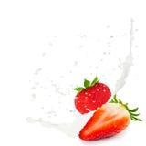 Mjölka färgstänkjordgubben Royaltyfri Bild