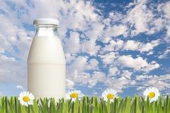 Mjölka flaskan på gräs och den blåa skyen Royaltyfri Foto