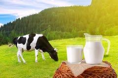 Mjölka i tillbringare och exponeringsglas arkivfoto