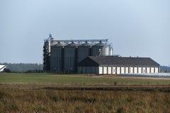 Mjölka lantgården med lagringssilor innehåller lokalvårdkemikalieer royaltyfri foto