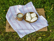 Mjölka och ost på gräset Royaltyfri Foto