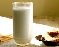 Mjölka och sockerkakor Royaltyfri Foto
