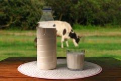 Mjölka på en bordlägga Royaltyfri Bild