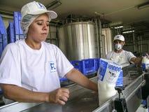 Mjölka produkter Fotografering för Bildbyråer