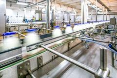 Mjölka produktion på linje på fabriken arkivbilder