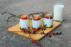 Mjölka pudding Arkivfoton