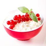 Mjölka rice och redcurrants Arkivfoto