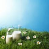 Mjölka tillbringaren och exponeringsglas på blommafält Arkivbilder