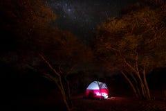 Mjölkaktig väg över tältet på campingplatsen i Afrika royaltyfri fotografi