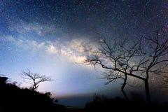 Mjölkaktig väg på himlen Arkivfoton
