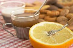 mjölkar den sädes- koppgrapefrukten för kexar tea Arkivbilder