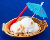 mjölkar kräm- is för kokosnöten Royaltyfria Bilder