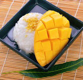Mjölkar söta klibbiga ris för efterrätt med mangokokosnöten Arkivfoton
