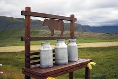 mjölkkannor mjölkar Fotografering för Bildbyråer