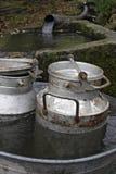 mjölkkannor mjölkar badar två Royaltyfri Bild