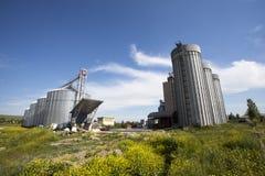 mjölindustri Royaltyfri Foto