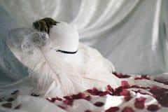 Mjuk derbyhatt för kronblad royaltyfri foto