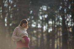 Mjuk dimmig stående av en gravid ung kvinna Arkivfoton