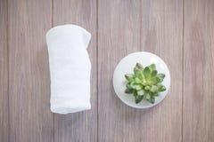 Mjuk fokus på den konstgjorda växten och vithandduken Arkivfoton