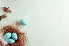 Mjuk garnering för vitblåttpåsk, målade påskägg i en ne Fotografering för Bildbyråer