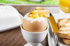 Mjuk-kokat ägg Arkivbild
