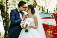 Mjuk kyss av tvåna i deras bröllopdag Royaltyfria Bilder