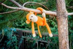 Mjuk leksak - apa på trädet Royaltyfri Bild
