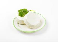 Mjuk mognad vit ost royaltyfria bilder
