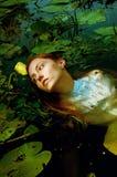Mjuk simning för ung kvinna i dammet bland näckrors Royaltyfria Bilder