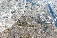 Mjuk våg av Black Sea på den sandiga stranden Royaltyfri Bild