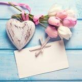 Mjuk vit och rosa färger fjädrar tulpan, den tomma etiketten och dekorativt H Fotografering för Bildbyråer