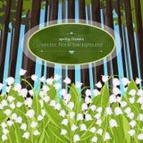 Mjuka blommor för liljekonvaljvår i en skogglänta, vektorillustration Vita knoppblåklockor och gröna stjälksidor stock illustrationer