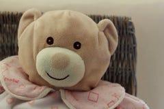 Mjuka leksaker - björn royaltyfri foto