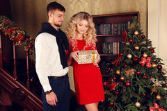 Mjuka par i elegant kläder som poserar bredvid julgranen på slags tvåsittssoffahemmet Royaltyfri Bild