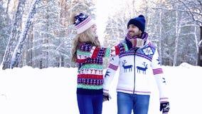 Mjuka par som tillsammans går i skogen på en härlig vinterdag stock video