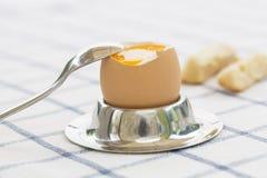 Mjukt kokt ägg i äggkopp med rostat bröd på tabellen Arkivbild