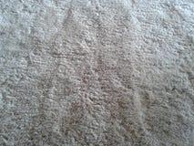 Mjukt matta Arkivfoto
